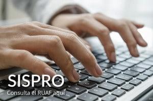 Consultar ruaf sispro