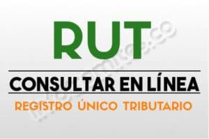 RUT : Como Sacar, Actualizar y Descargar Gratis por Internet