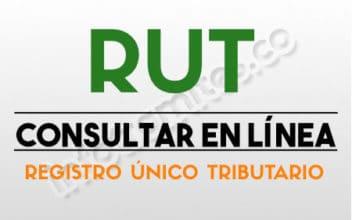 RUT CONSULTAR