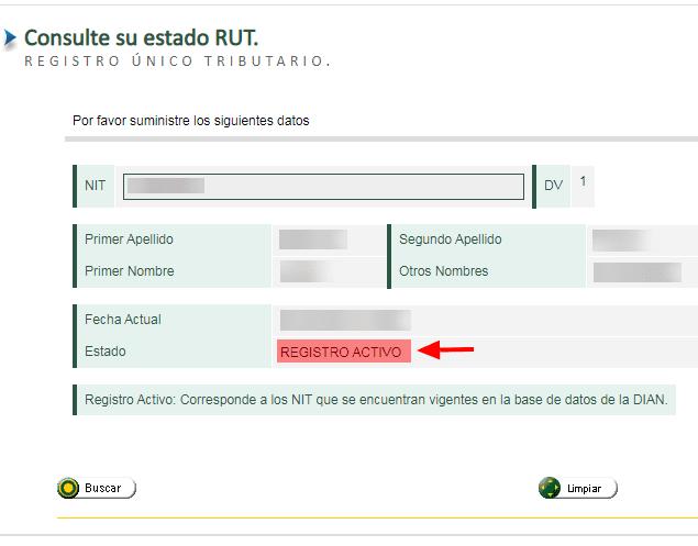 Consulta Del Estado Del Rut