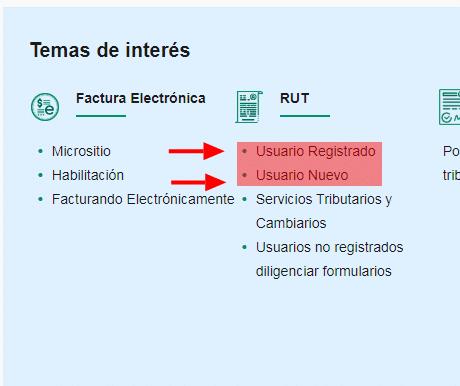 Usuario Nuevo O Registrado Dian