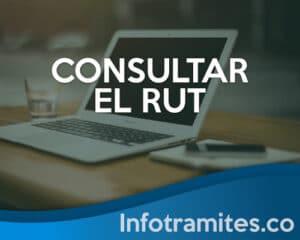 Como Consultar el RUT en línea con la cédula