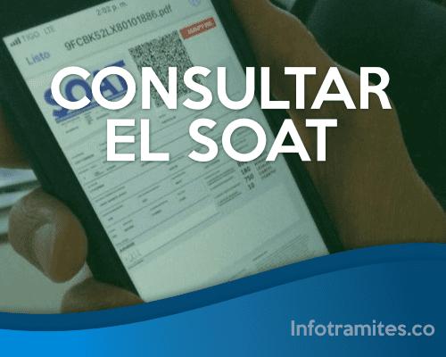 SOAT Consultar