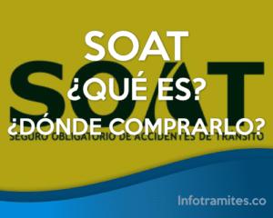 SOAT: Que es, Importancia y Donde Comprarlo