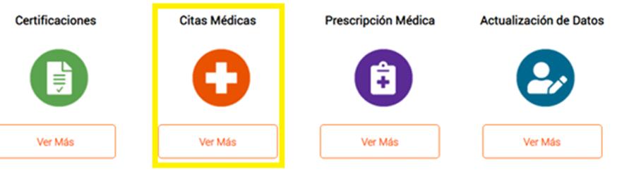 Opción Citas Médicas 2